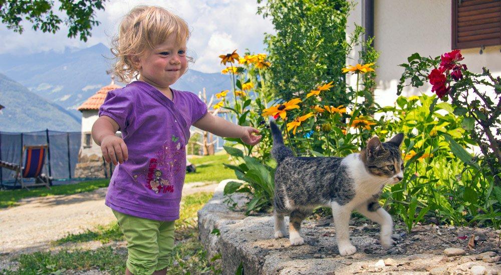 Urlaub mit dem Kleinkind – Babybauernhof in Südtirol