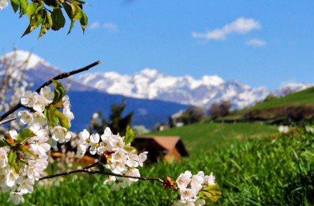 Frühlingserwachen – Günstiger Urlaub im April