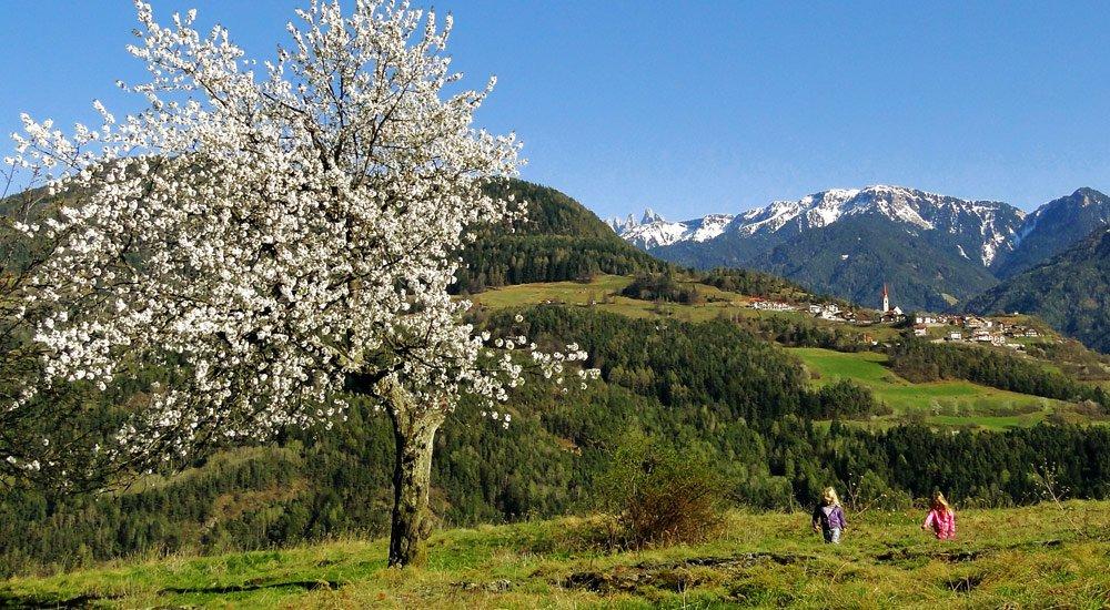 Osterurlaub mit Kindern in Südtirol