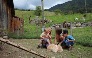 Familienfreundlicher Kinderbauernhof
