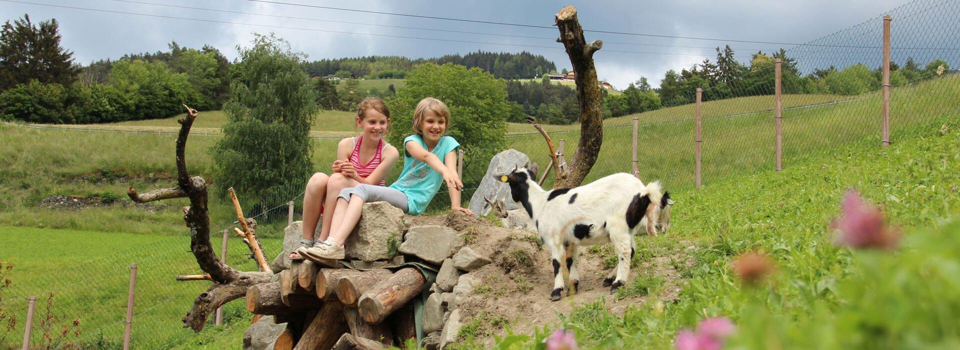 bauernhofurlaub-suedtirol-kinderferien