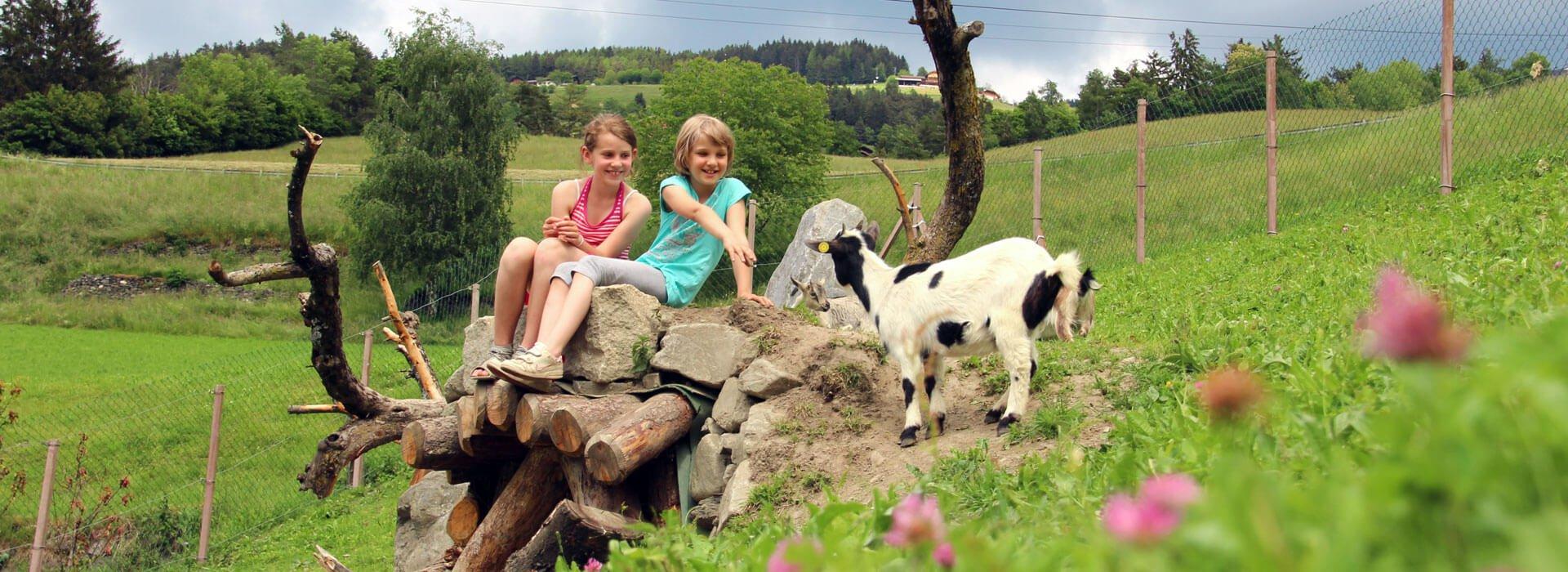 kinderbauernhof-tiere