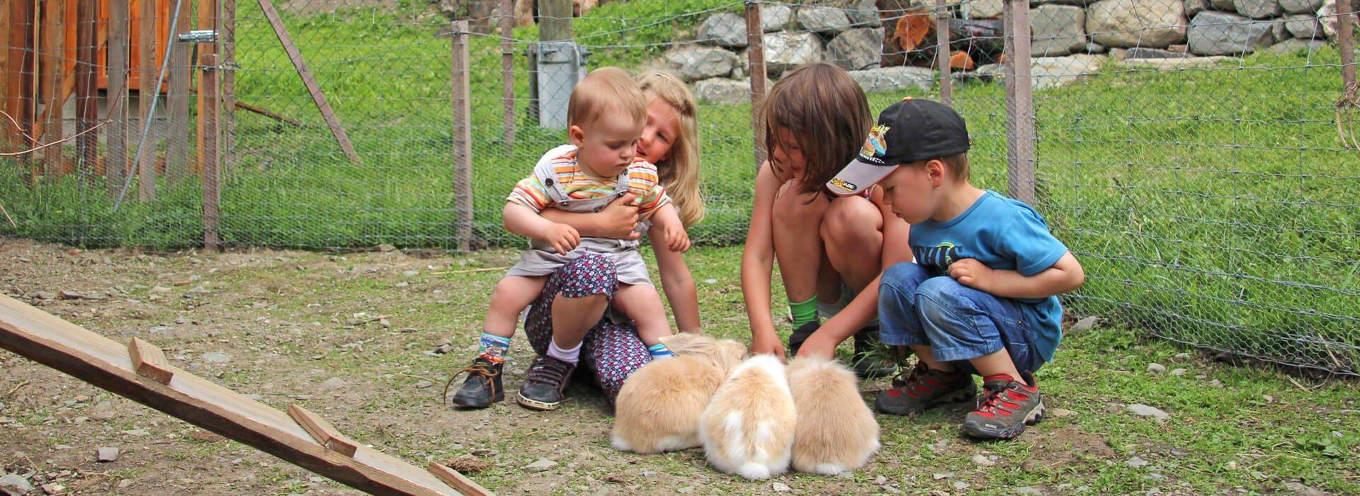 kinderferienhof-kinder